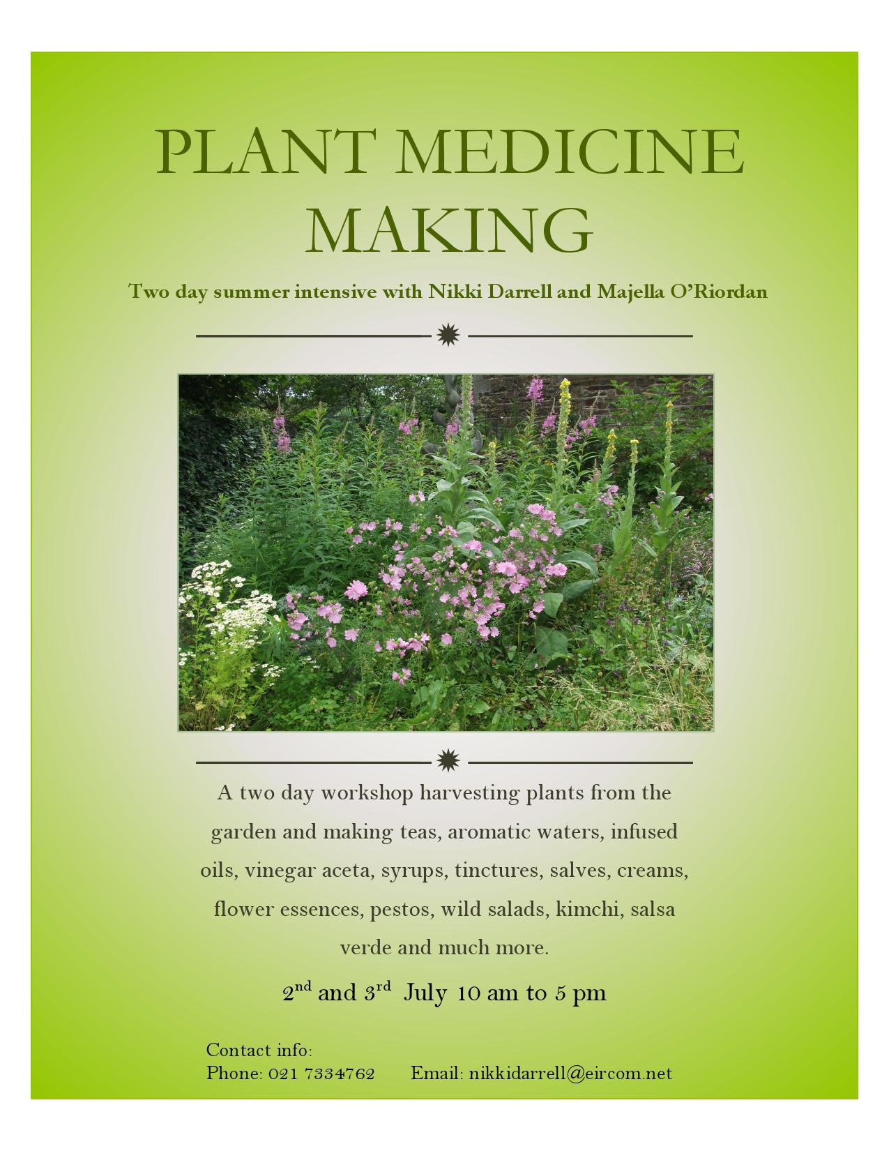 medicine making flyer pdf(1)_000001